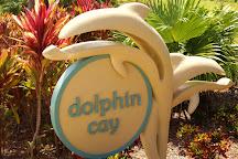 Dolphin Cay, Paradise Island, Bahamas