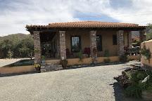 Lechuza Vineyard, Valle de Guadalupe, Mexico