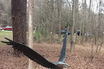 Carolina Raptor Center, Huntersville, United States