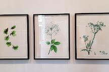 Impressions Gallery, Bradford, United Kingdom