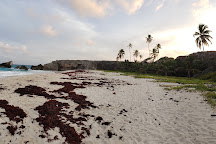 Harrismith Beach, Bottom Bay, Barbados