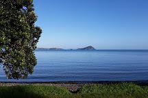 Hauraki Gulf, Auckland, New Zealand