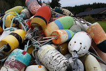 John's Beachcombing Museum, Forks, United States