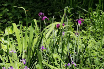 Western Hills Garden, Occidental, United States