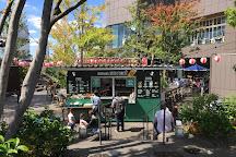 Tokyu Plaza Omotesando Harajuku, Shibuya, Japan