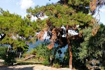 Buyukada Tabiat Parki, Buyukada, Turkey