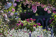 RHS Garden Rosemoor, Great Torrington, United Kingdom