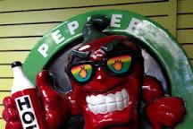 Pepper Palace, Gatlinburg, United States