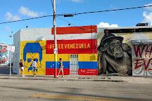Wynwood Art Walk, Miami, United States