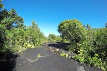 Saleaula Lava Fields, Savai'i, Samoa