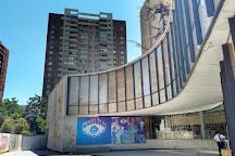 Museo Violeta Parra, Santiago, Chile