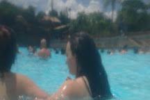Typhoon Lagoon Surf Pool, Orlando, United States