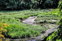 Sequalitchew Creek Trail Head, Dupont, United States