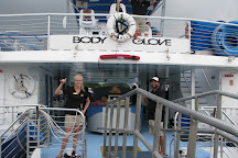 Body Glove Cruises, Kailua-Kona, United States