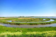 National Park De Biesbosch, Drimmelen, The Netherlands