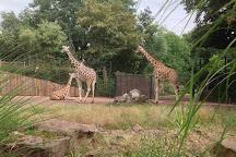 Zoologischer Garten Magdeburg, Magdeburg, Germany