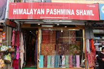 Himalayan Pashmina Shawls, Leh, India