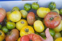 Margaret River Farmers Market, Margaret River, Australia