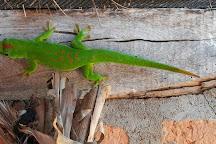 Réserve Peyrieras Madagascar Exotic, Antananarivo, Madagascar