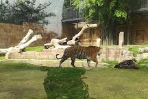 Zoo Cordoba, Cordoba, Spain