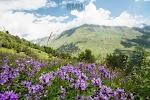 Russian Mountain Holidays   Elbrus Climbing Guides, улица Панагюриште, дом 6 на фото Пятигорска
