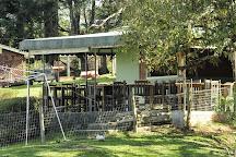 Vila dos Animais, Campina Grande Do Sul, Brazil