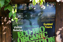Eco Finca Platano Logico, Puerto Naos, Spain