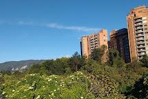 Humedal de Cordoba, Bogota, Colombia