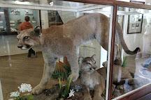 Longmire Museum, Longmire, United States