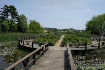 Agroland Taesin Farm, Dangjin, South Korea