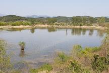 Upo Wetland, Changnyeong-gun, South Korea