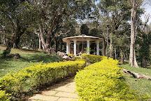 Rose Garden, Yercaud, India