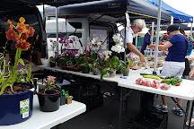 Takapuna Markets, Takapuna, New Zealand