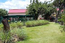 Coopérative Pro Vanille, Bras-Panon, Reunion Island