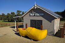 Tesselaar, Silvan, Australia
