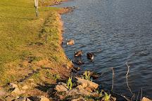 Lake Fairfax Park, Reston, United States
