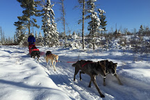 Chilly Dogs Sled Dog Trips, Ely, United States