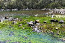 Tasman National Park, Eaglehawk Neck, Australia