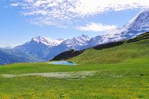 Maennlichen, Grindelwald, Switzerland