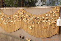 The Danube Delta Museum, Tulcea, Romania