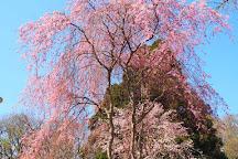 Zenkoji Temple, Date, Japan