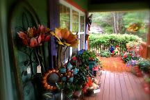 Slick Rock Country Emporium, Hendersonville, United States