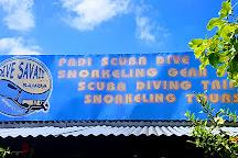 Dive Savaii, Fagamalo, Samoa