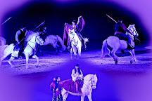 Cabaret Equestre des Dunes, Aigues-Mortes, France