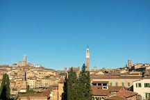 Basilica di San Clemente in Santa Maria dei Servi, Siena, Italy