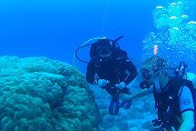 Dive Rarotonga, Rarotonga, Cook Islands