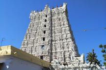 Nagaraja Temple, Nagercoil, India