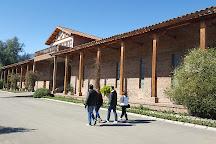 Vina El Principal, Pirque, Chile