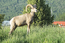 James Chabot Provincial Park, Invermere, Canada