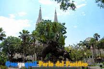 Parque Seminario, Guayaquil, Ecuador
